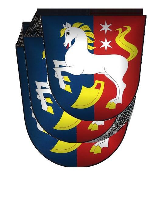 Obec Svratouch